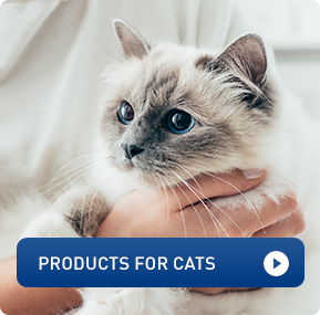 products for cats